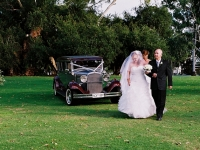 Vintage Wedding Limousine with Couple on Grass