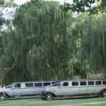Vintage limousines parked in the gardens